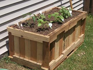 Construire-une-jardinière-avec-des-palettes